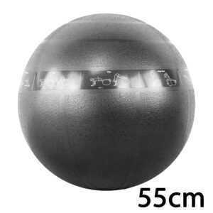 cPro9 ABS Guide Træningsbold 55 cm Sort